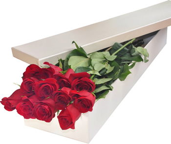 12 Red Roses in Box  sc 1 st  Filipinas Gifts & Filipinas Gifts | 12 Red Roses in Box Aboutintivar.Com