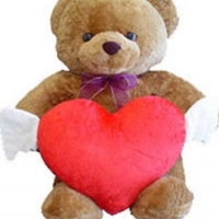 2 ft Brown Teddy Bear with heart shape Pillow.