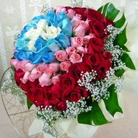 99 Roses ( 5white20blue33Pink41red) Hand bouquet