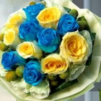 Blue & yellow Roses