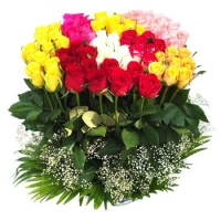 100 Mixed Roses in Basket.