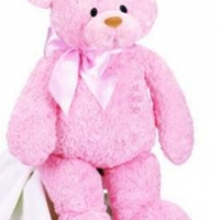 3 ft Teddy Bear pink
