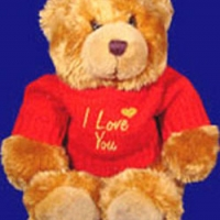 2 ft Teddy Bear with I love You T-shirt-2