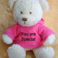 you r special Teddy Bear with T-shirt
