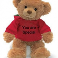 2 ft Brown w/you are special T-shirt