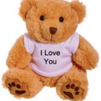 2 ft  Brown I Love you Teddy Bear with T-shirt