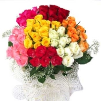 Bunch of 72 Mix Roses
