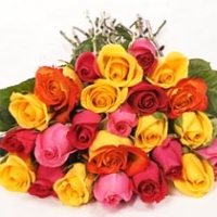 36 Mixed Blossoms Roses