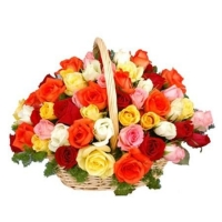 mix Rainbow Roses basket