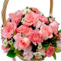 Carnations& roses Basket