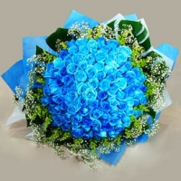 60 Blue Roses Bunch