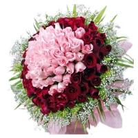 Exotic looking Bunch of 100 roses in red and pink